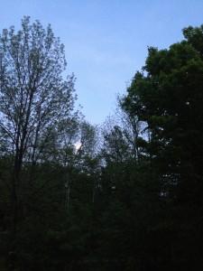 may moon